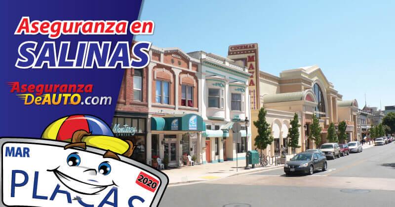 Aseguranza en Salinas. Seguros de Auto en Salinas, CA. Seguro para negocio en Salinas, CA