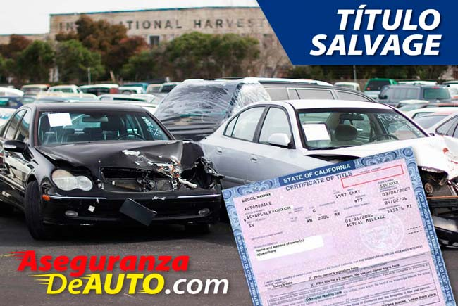 Salvage DMV. DMV Registration. Auto Salvage. Servicio DMV.