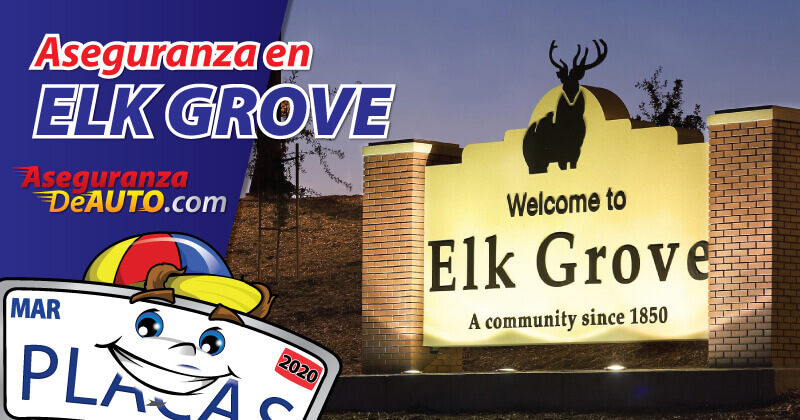 Ca Dmv Release Of Liability >> Insurance in Elk Grove CA | DMV Registration | Aseguranza ...