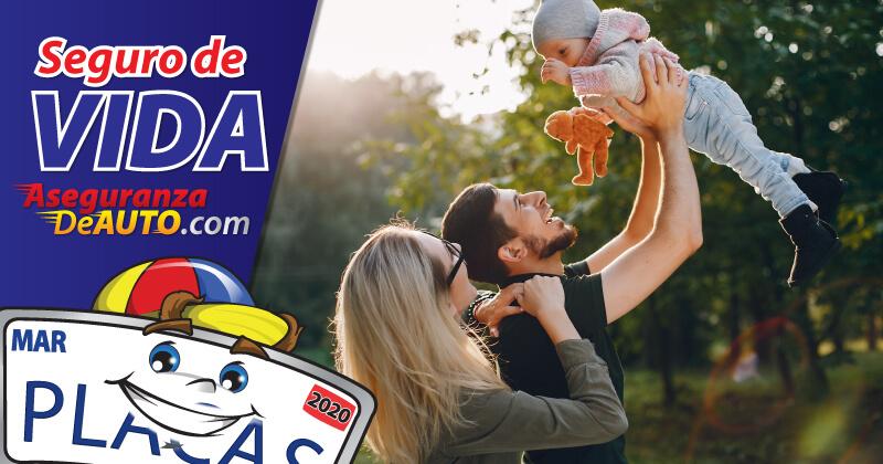 aseguranza de vida seguro de vida seguro de vida que es life insurance in spanish seguro de vida in english aseguranza de auto